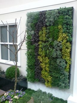 Wall of herbs...vertical planting on either side of patio doors!