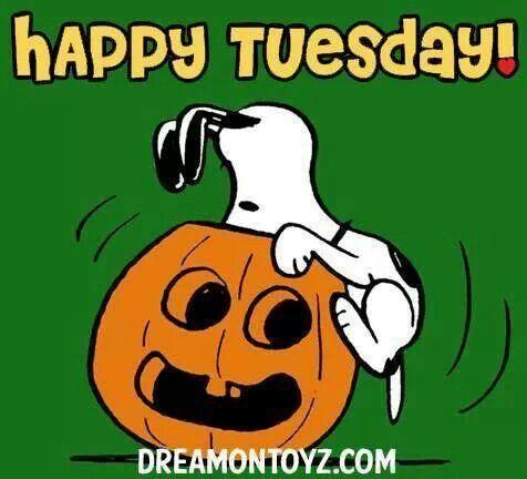 happy tuesday snoopy memes - photo #24