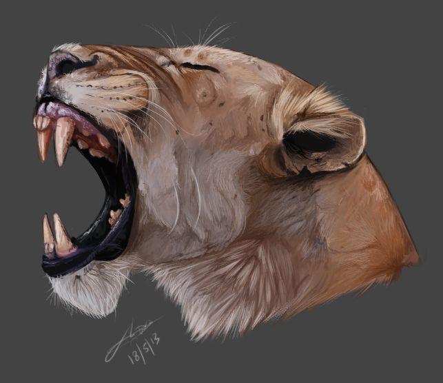 Lion tumblr head