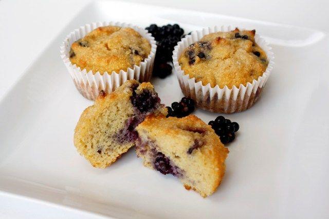 blackberry coconut flour and almond flour muffins