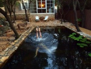 Naturalized pool