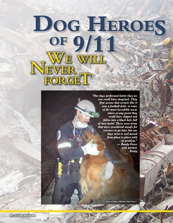 K-9 Search and Rescue: Dog Heroes of 9/11: We Will Never Forget