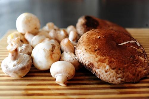 Mushroom Phyllo Bundles Recipe — Dishmaps