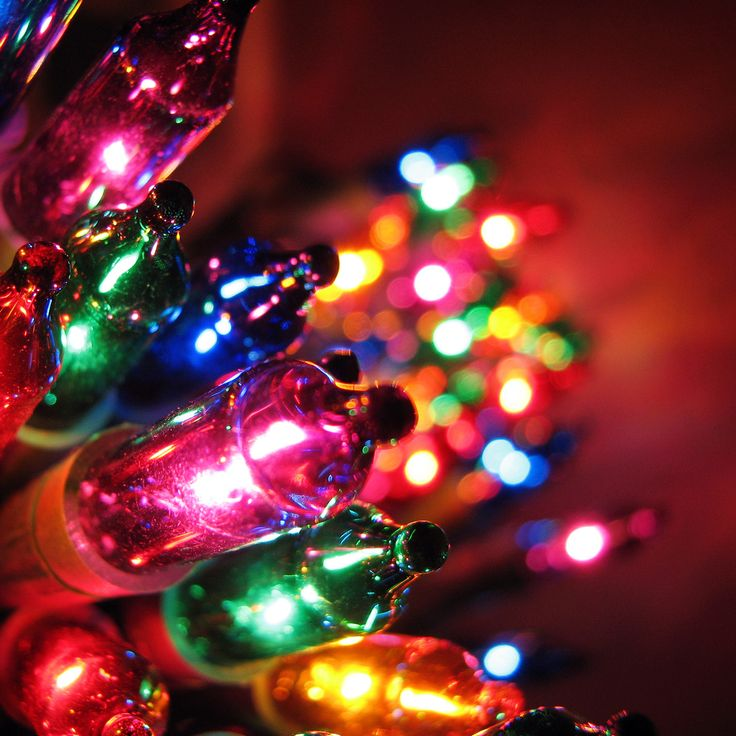 Hang Your Holiday Lights Safely | Homesessive