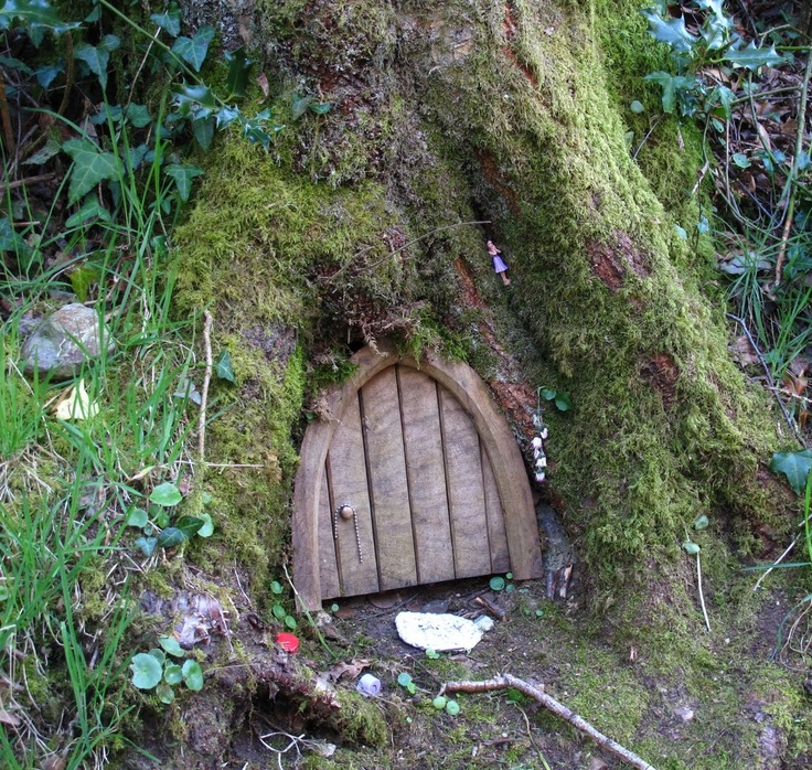 Fairy door in a tree fairies pinterest for Gnome doors for trees