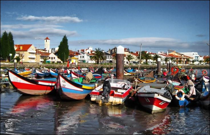 Murtosa Portugal  city pictures gallery : Murtosa, Aveiro, Portugal