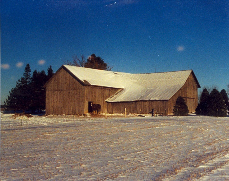 Taylor County Barn   Photo by Michael J. Rieger