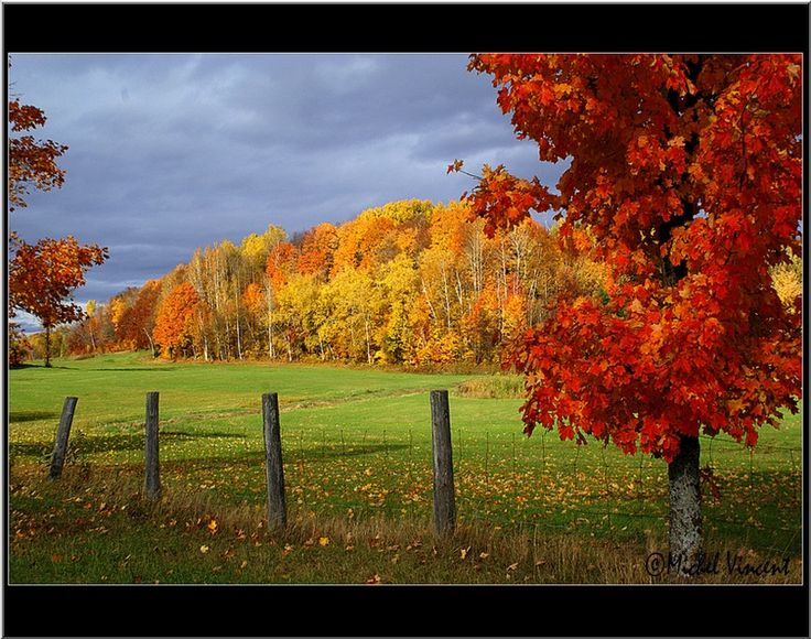 country autumn landscape miscellaneous stuff pinterest