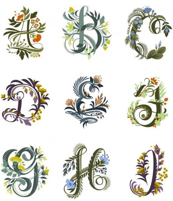 jill de haan's floral alphabet