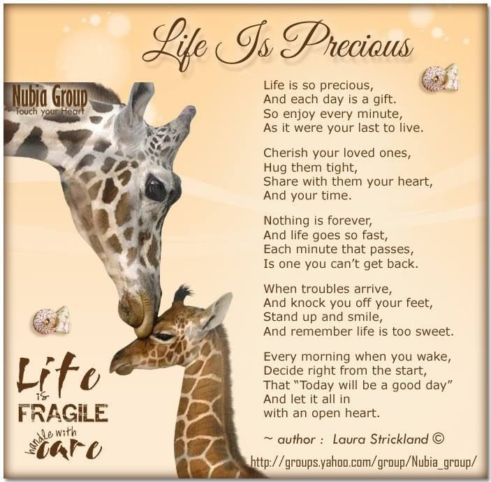 Life is Fragile...handle with care. Art and Quotes and