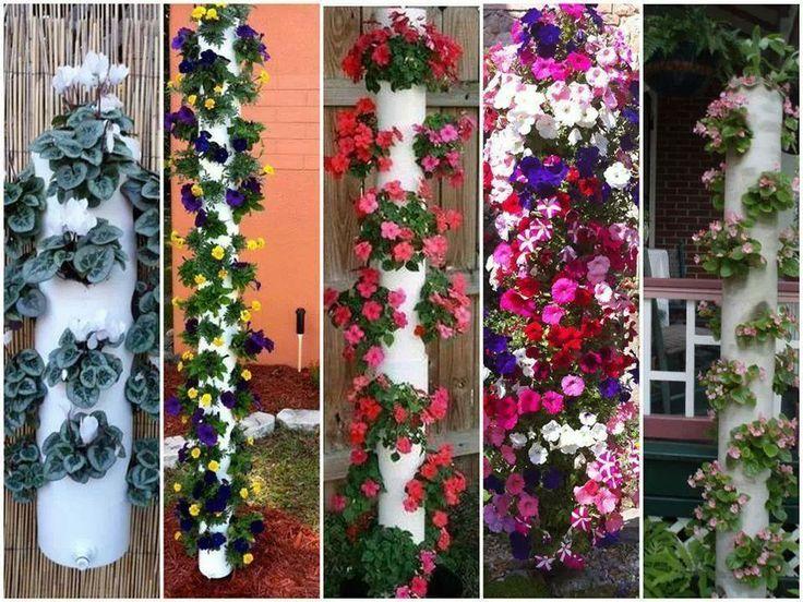 tubos de pvc como floreira  Jardins  Pinterest