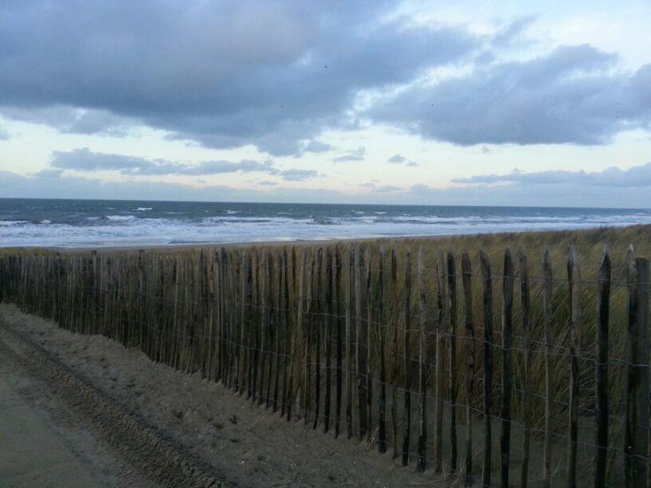 Kok Halland :  beach @ Holland  Beach  Strand Sea  Zee the Netherlands