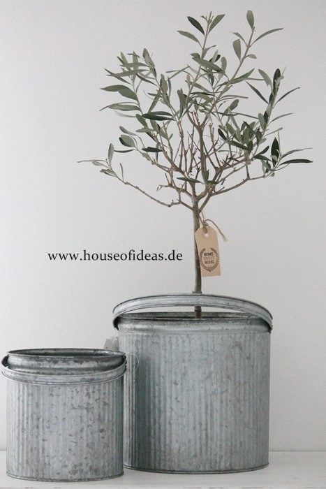 www.houseofideas.de