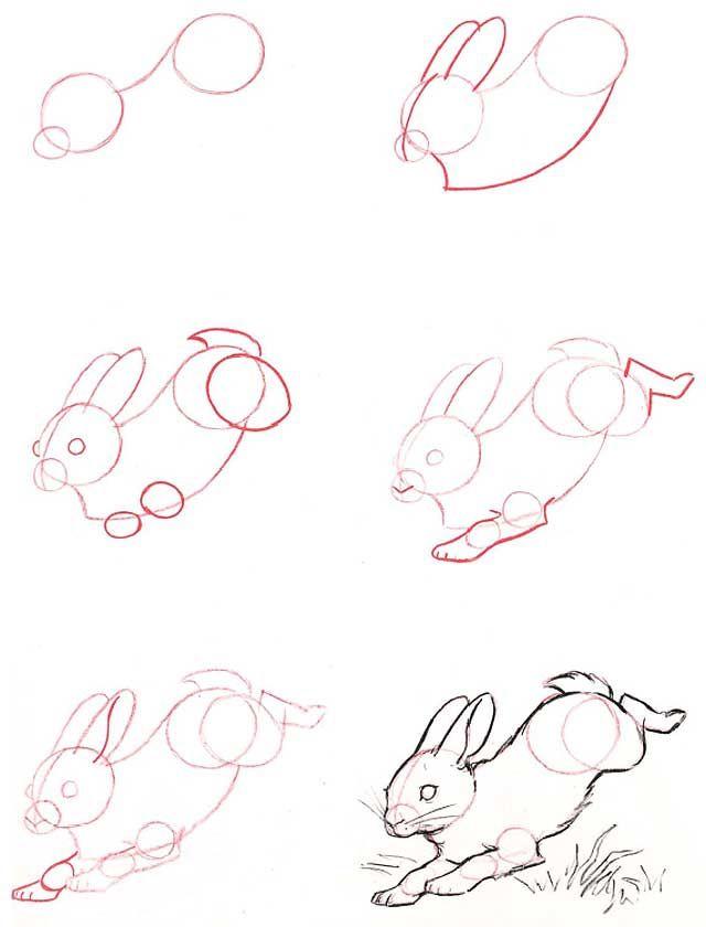 Le coin des enfants comment dessiner un lapin - Lapin a dessiner ...
