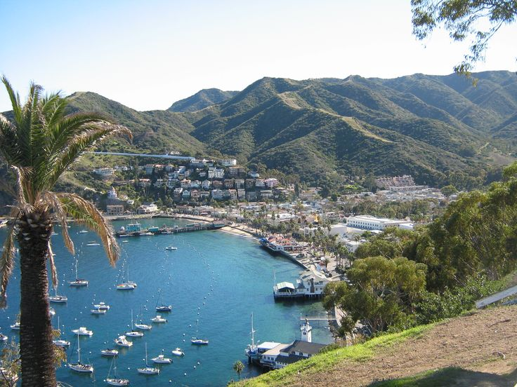 Views Of Catalina Island Theroadery Best Of Southern