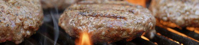 Bison Recipes | Bison | Pinterest