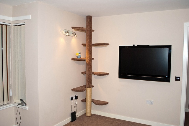 Climbing pole | DIY & Decorating for Home | Pinterest