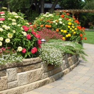 Retaining wall flower bed moving on pinterest for Flower bed wall designs