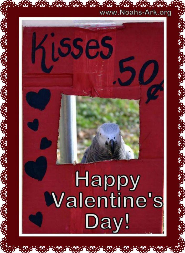 valentine buddy activities