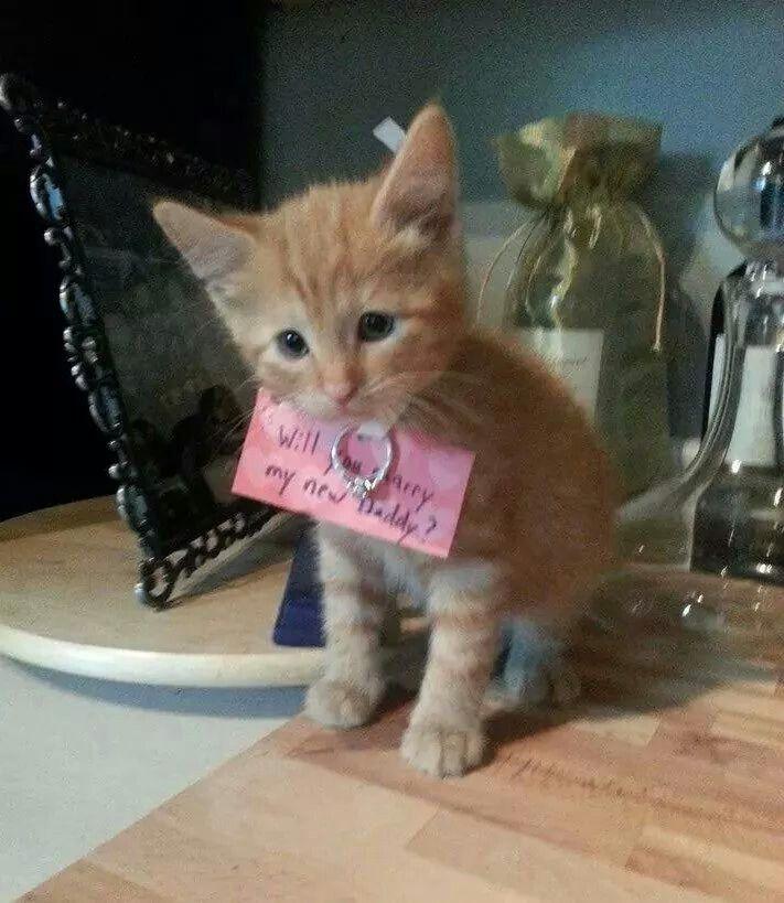 Cute Proposal Idea