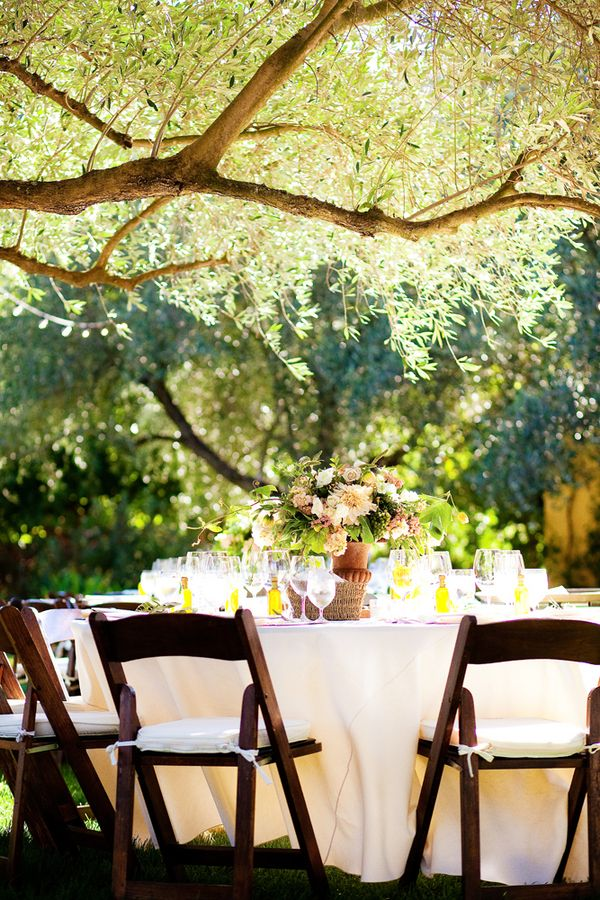 Backyard Vineyard Ideas : Backyard Vineyard Wedding Reception  photography by httpwww