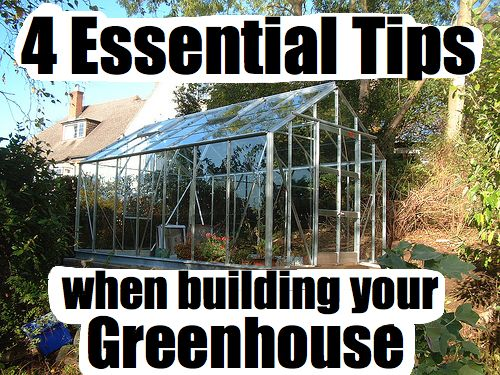 Greenhouse Building Tips Go Green Gardening Pinterest