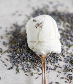White Chocolate Chunk Lavender Ice Cream | Lavender | Pinterest