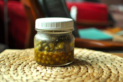 Pickled Spring Peas | Culinary_Pickling / Preserving | Pinterest