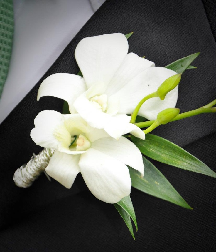 White Dendrobium Orchid Prom Boutonniere | Prom Flower ...