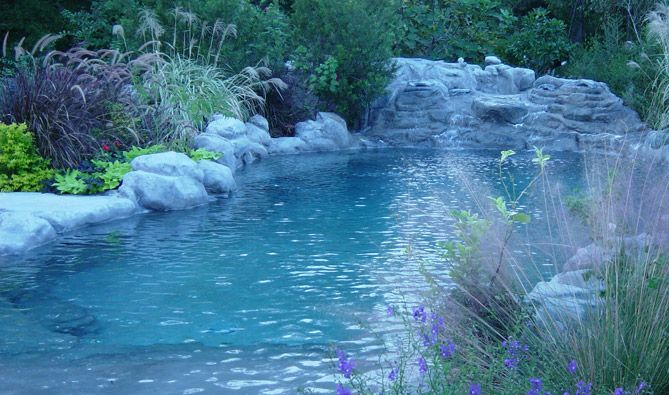 Pool that looks like a pond other pinterest for Swimming pools that look like ponds