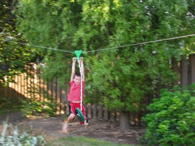 of these in my backyard my boys and hubby would like this zip line
