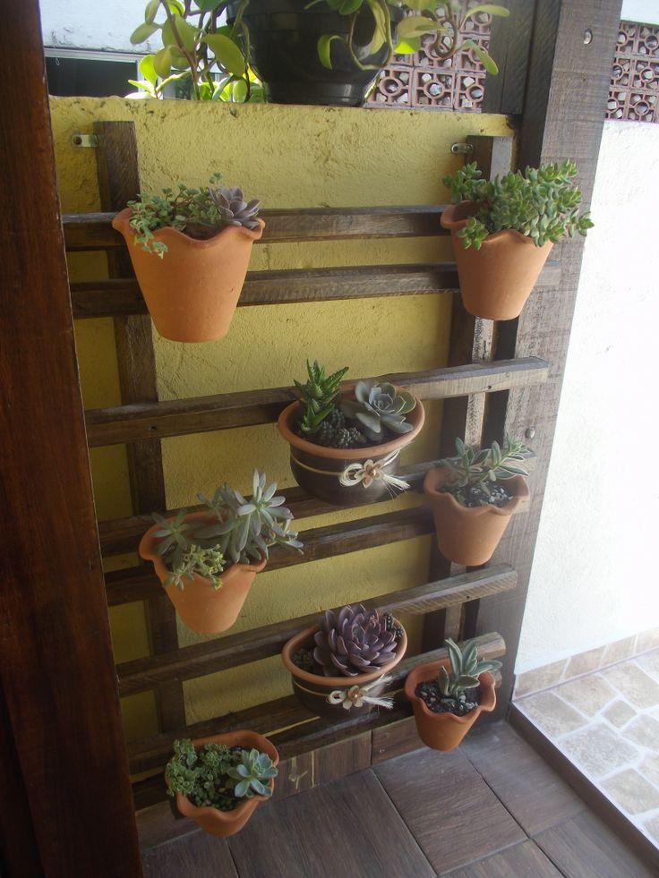 Jardim vertical de #suculentas  Plantas e Jardim  Pinterest