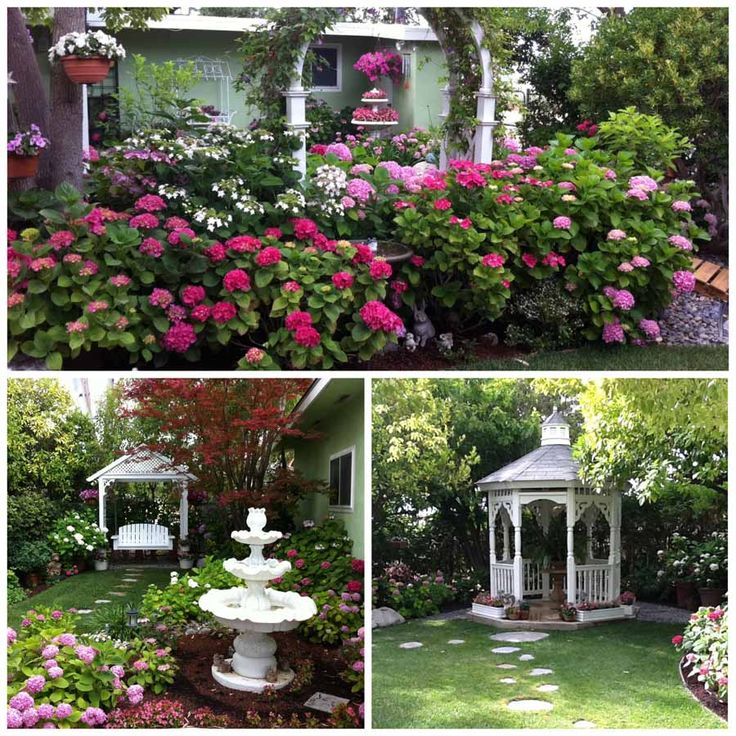 Hydrangea garden in southern california landscaping and for Southern california landscaping ideas