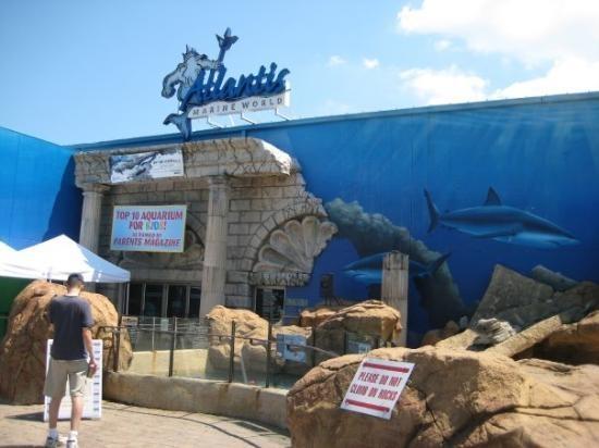 Long Island Aquarium Exhibition Center Nanas Wedding