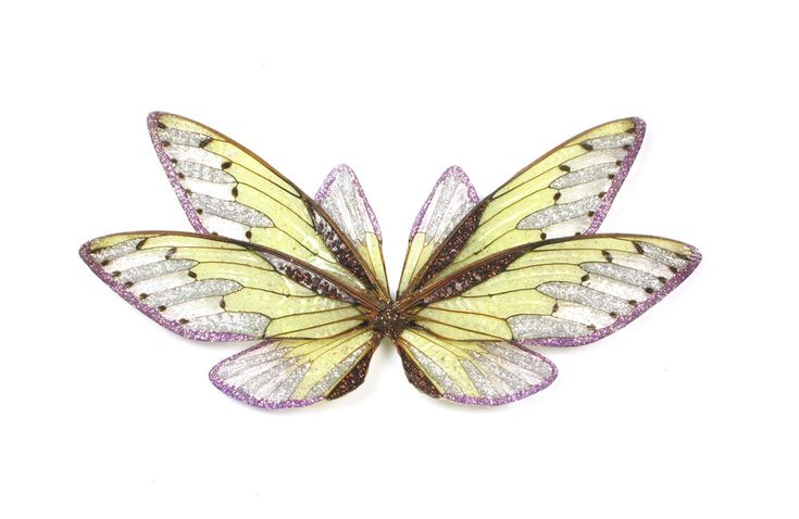 Märta Mattsson Brooch: Palindrome, 2014 Cicada wings, resin, crushed sulphur, silver, glitter