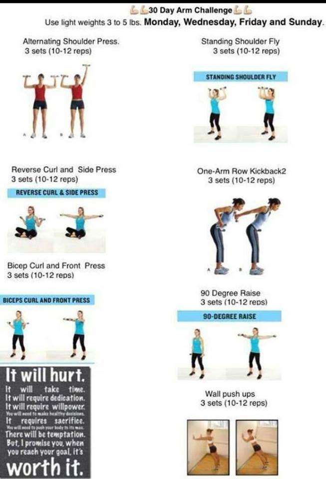30 day arm challenge health amp fitness pinterest