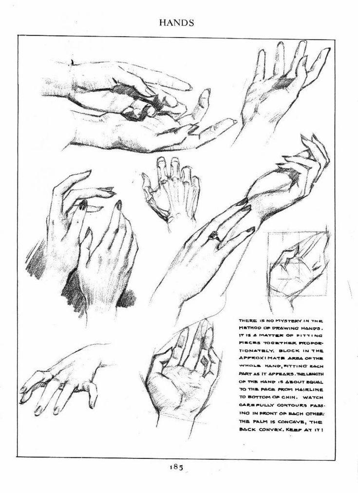 Dibujo de manos 08