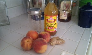 Peach-Ginger shrub. This sounds so delicious!