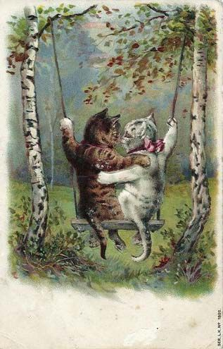 Cat sweethearts. Postcard. 1904.