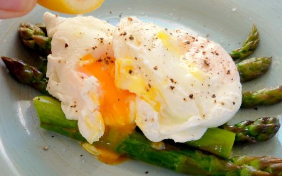 Pin by NZ Eggs on Ideas with Eggs | Pinterest