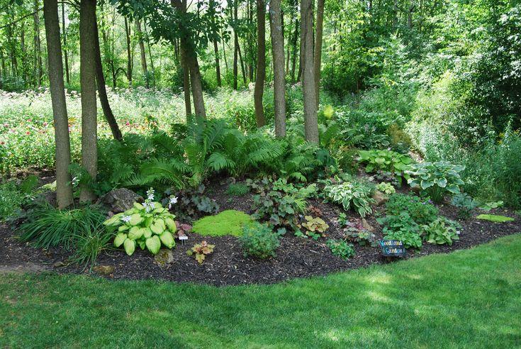 Woodland gardens garden ideas pinterest for Woodland garden designs