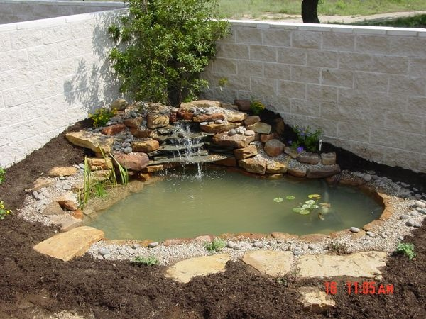 Corner pond turtle pond pinterest - Corner pond ideas ...