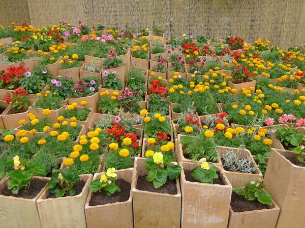 Small Garden Ideas Pinterest Photograph | Small garden ideas