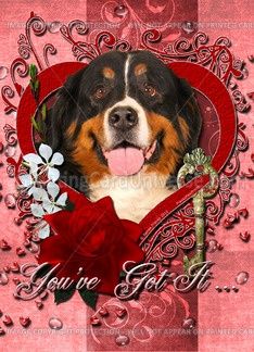 valentine images dogs