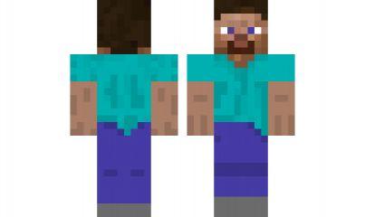 minecraft skin Steve-Backwards | Minecraft Skins | Pinterest