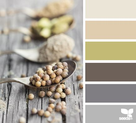 Fall Inspired Color Palettes - autumn spice