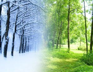 summer vs winter Winter and summer-a compare and contrast essay seasons are what make life interesting-if there were no seasons, life would be quite bland seasons are 4 very different periods of the year-there is spring, summer, autumn, and winter.