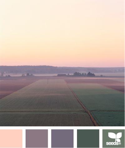 misty hues