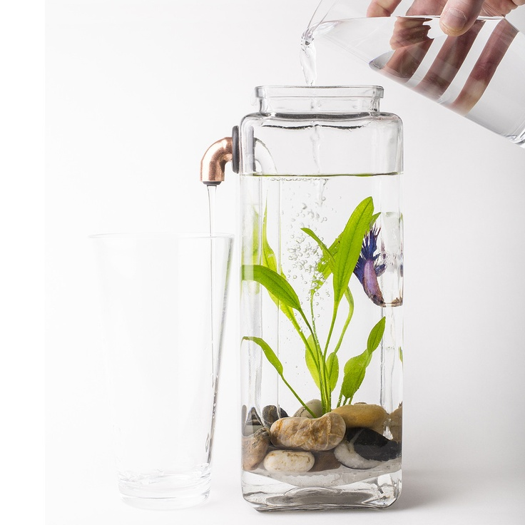 Self cleaning betta aquarium this is a very cool design for Cleaning betta fish tank