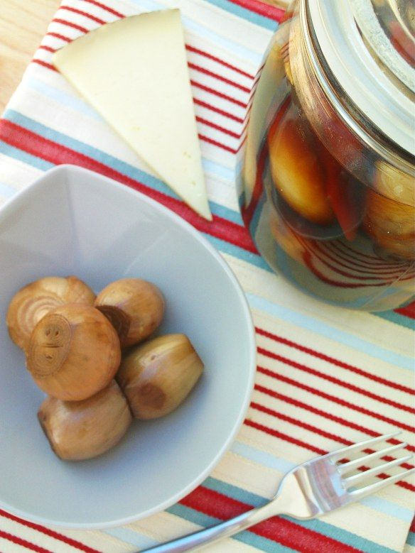 Pickled Spring Onions Recipes — Dishmaps